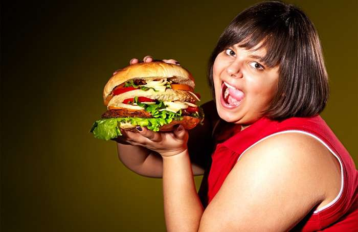 obesity nutrition and fast food