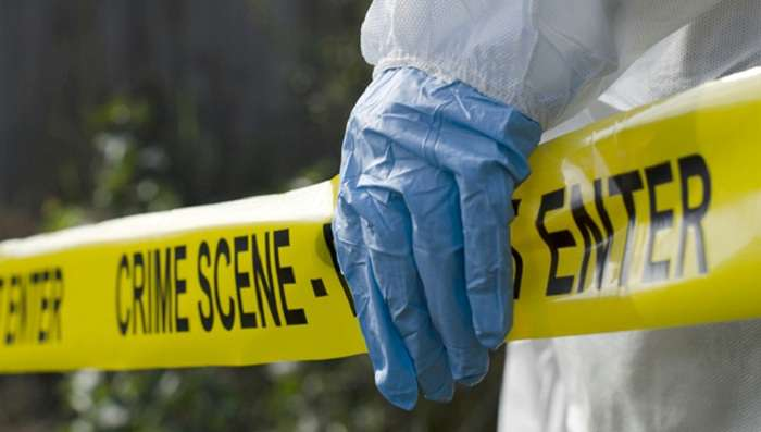 an analysis of the crime scene investigation in the united states